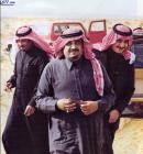 الصورة الرمزية احمد المراس