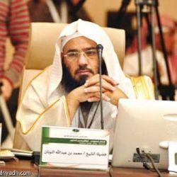 محمد عبدالله النونان الفريدي